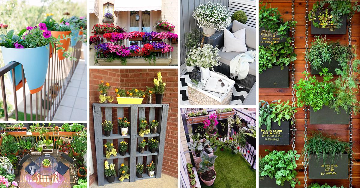 50 best balcony garden ideas and designs for 2020 on Flower Garden In Balcony id=12818