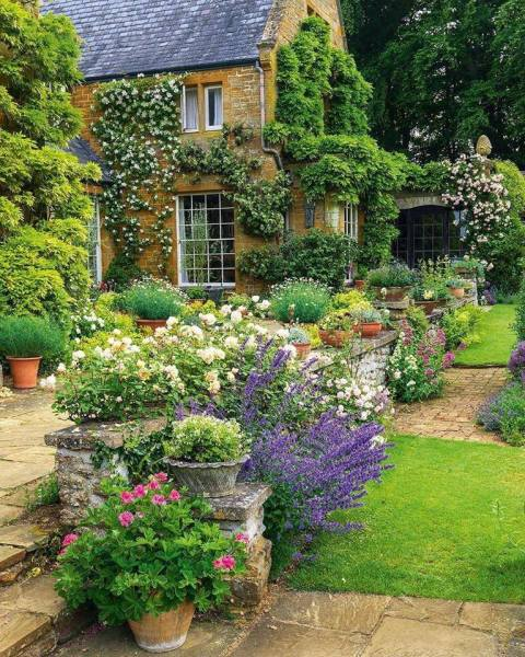 flowers for cottage style gardens 45+ Best Cottage Style Garden Ideas and Designs for 2019