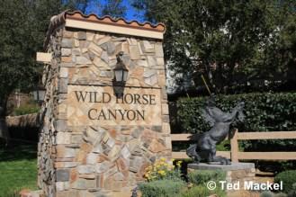 Simi Valley Wild Horse Canyon