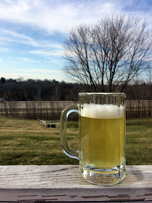 a mug of hard cider with trees in the background