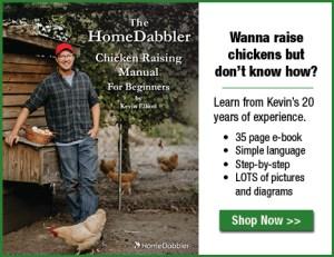 HomeDabbler Chicken Raising Manual