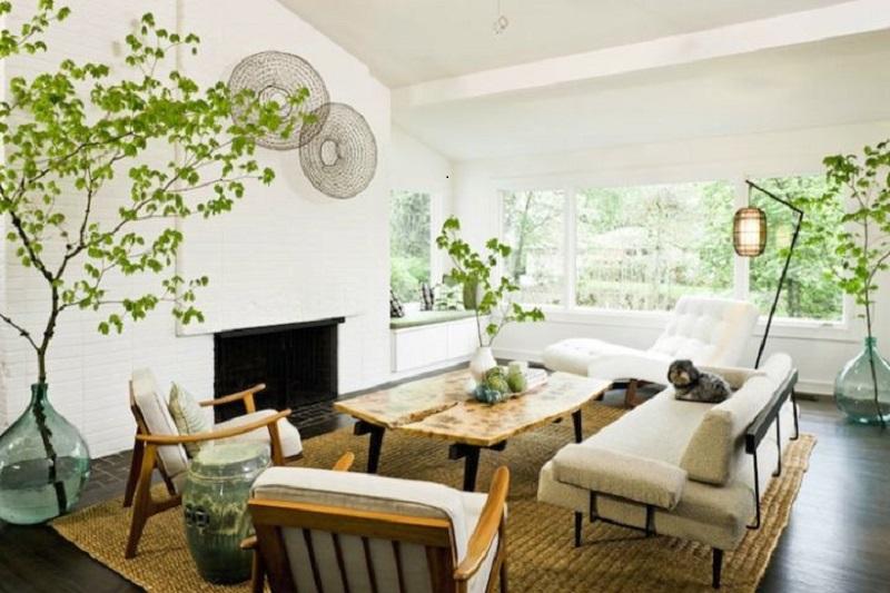 nature-themed-zen-living-room-ideas