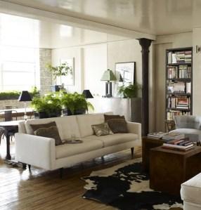 Indoor Plants in Homes