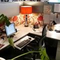Office Cubicle Decor