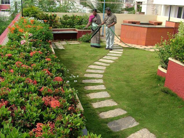 Rooftop gardens home decor designs for Help me design a garden