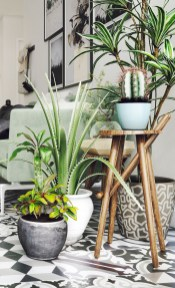 Inspiring Indoor Plans Garden Ideas To Makes Your Home More Cozier 01