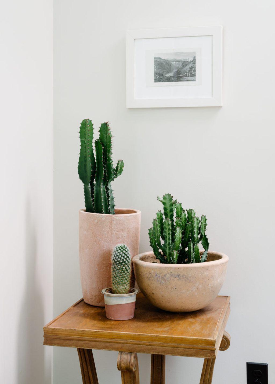 Inspiring Indoor Plans Garden Ideas To Makes Your Home More Cozier 03