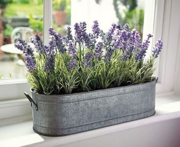 Inspiring Indoor Plans Garden Ideas To Makes Your Home More Cozier 05