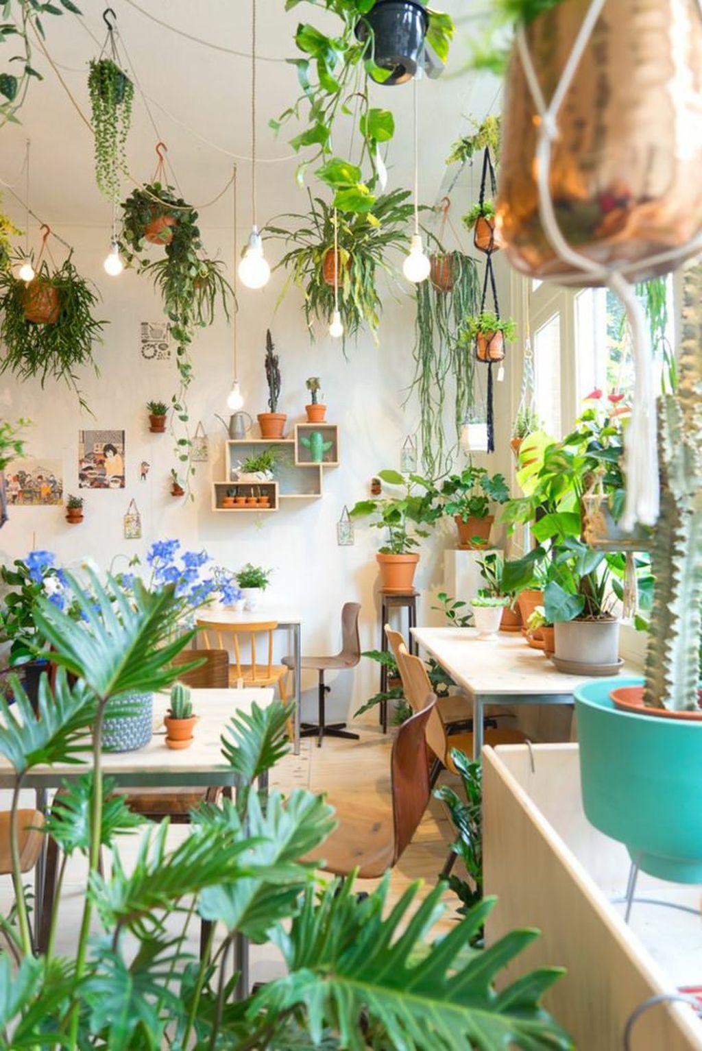 Inspiring Indoor Plans Garden Ideas To Makes Your Home More Cozier 17