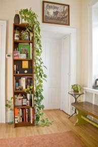 Inspiring Indoor Plans Garden Ideas To Makes Your Home More Cozier 27