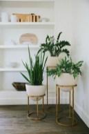 Inspiring Indoor Plans Garden Ideas To Makes Your Home More Cozier 30