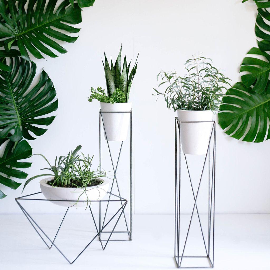 Inspiring Indoor Plans Garden Ideas To Makes Your Home More Cozier 40
