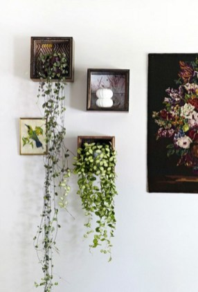 Inspiring Indoor Plans Garden Ideas To Makes Your Home More Cozier 43
