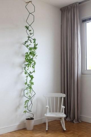 Inspiring Indoor Plans Garden Ideas To Makes Your Home More Cozier 47