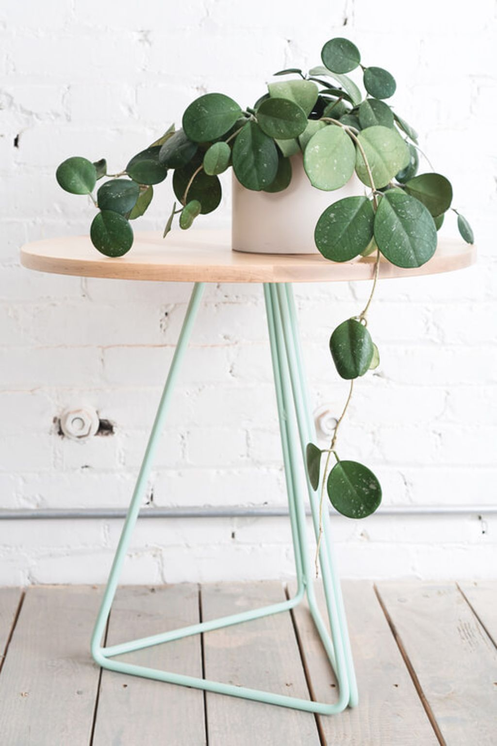 Inspiring Indoor Plans Garden Ideas To Makes Your Home More Cozier 61