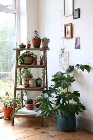 Inspiring Indoor Plans Garden Ideas To Makes Your Home More Cozier 63