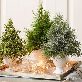 Brilliant DIY Christmas Centerpieces Ideas You Should Try 17