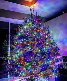 Cute And Colorful Christmas Tree Decoration Ideas To Freshen Up Your Home 19
