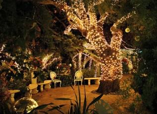 Amazing Backyard Fairy Garden Ideas On A Budget 21