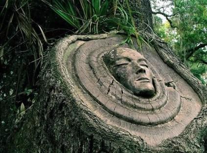 Amazing Backyard Fairy Garden Ideas On A Budget 42