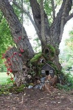 Amazing Backyard Fairy Garden Ideas On A Budget 46
