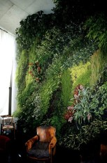 Cool Indoor Vertical Garden Design Ideas 04