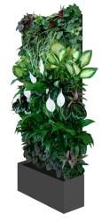 Cool Indoor Vertical Garden Design Ideas 31