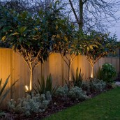 Cozy Backyard Landscaping Ideas On A Budget 17