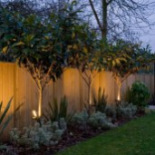 Cozy Backyard Landscaping Ideas On A Budget 17
