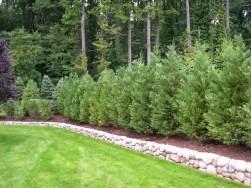 Cozy Backyard Landscaping Ideas On A Budget 21