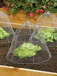 Incredible Small Backyard Garden Ideas 33