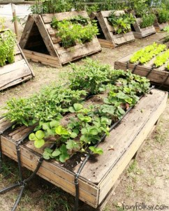 Incredible Small Backyard Garden Ideas 45