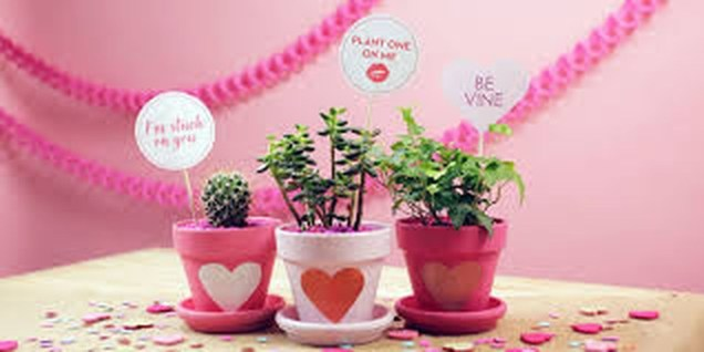 Amazing Outdoor Valentine Decoration Ideas 01
