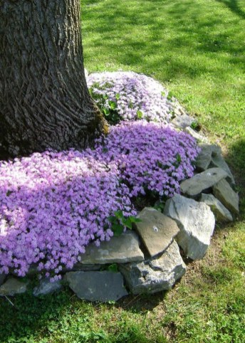 Beautiful Front Yard Rock Garden Design Ideas 09