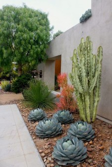 Stunning Front Yard Walkway Landscaping Design Ideas 38