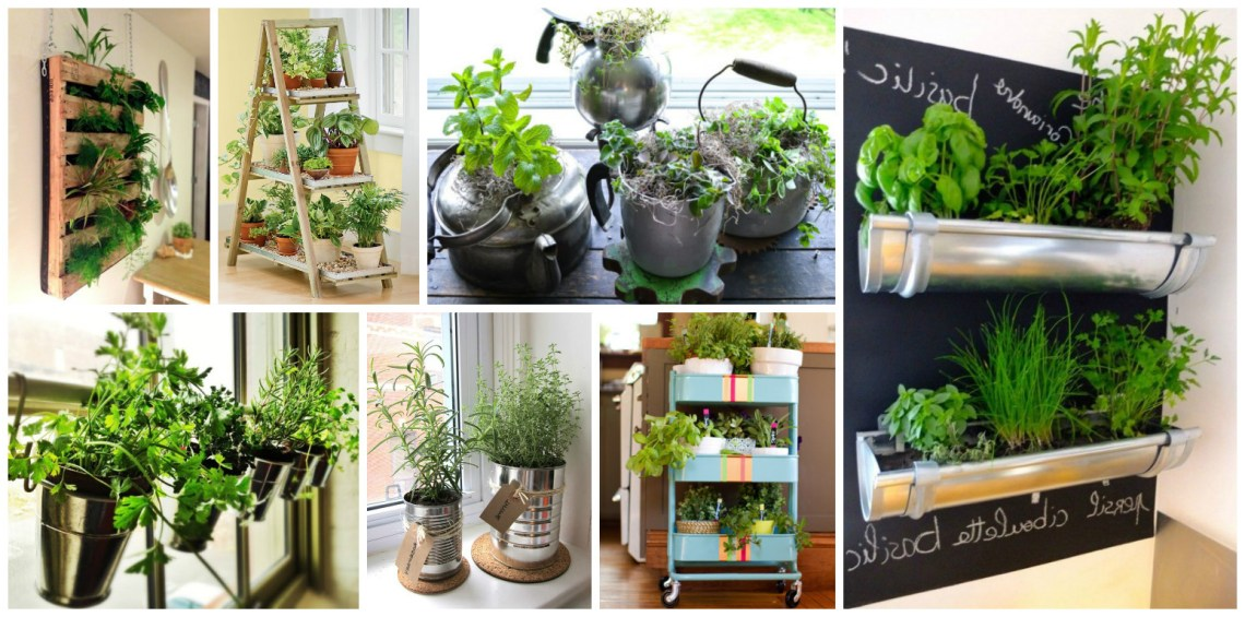 15 Amazing Ideas For Indoor Herb Garden Ideas To Love