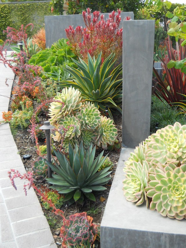 15 Beautiful Tropical Front Yard Landscape Ideas To Make