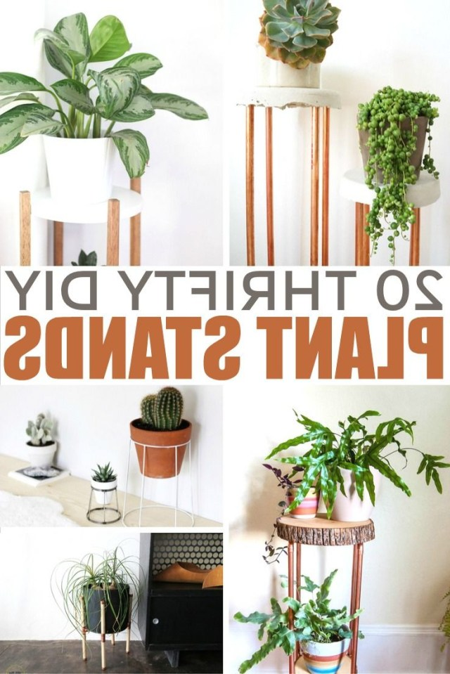 20 Thrifty Diy Plant Stands Diy Plant Stand House