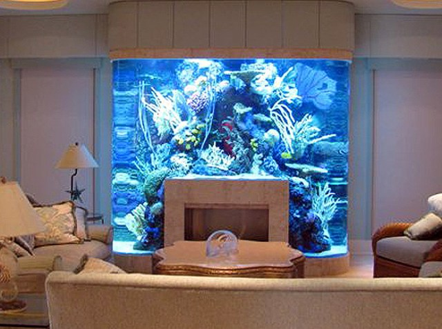 20 Unusual Places For Aquariums In Your Home
