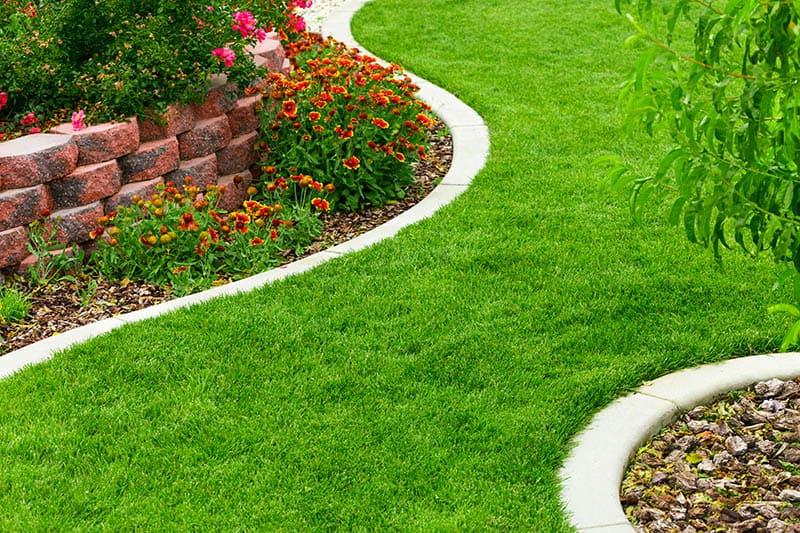 23 Cheap Amazing Garden Edging Ideas You Can Try Green