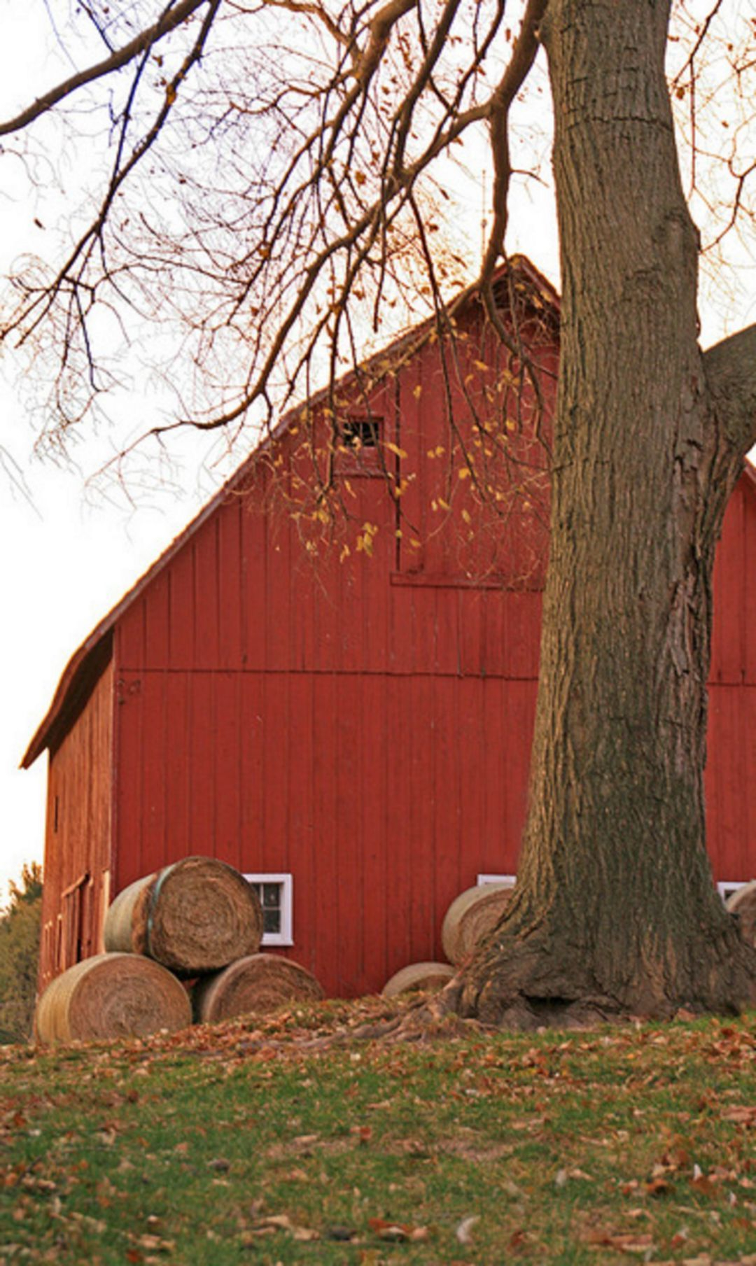 30 Fantastic Red Barn Building Ideas For Inspire You With