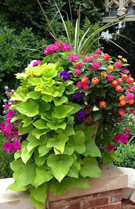 45 Amazing Summer Planter Ideas To Beautify Your Home