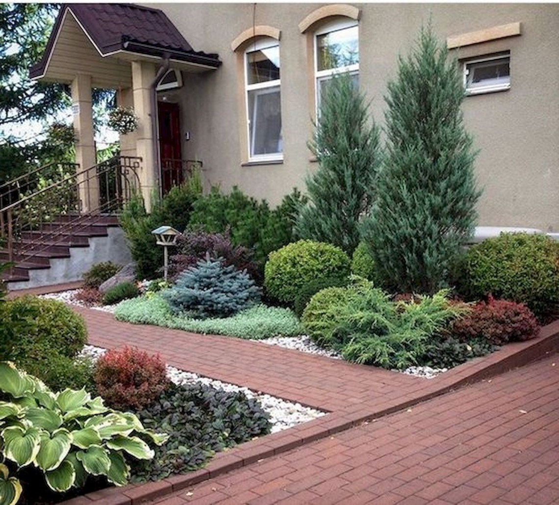 60 Beautiful Front Yards And Backyard Evergreen Garden