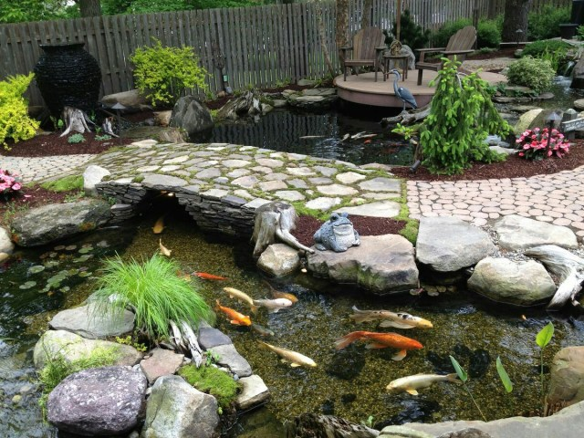 60 Photos Of Small Eye Catching Backyard Ponds Ideas For