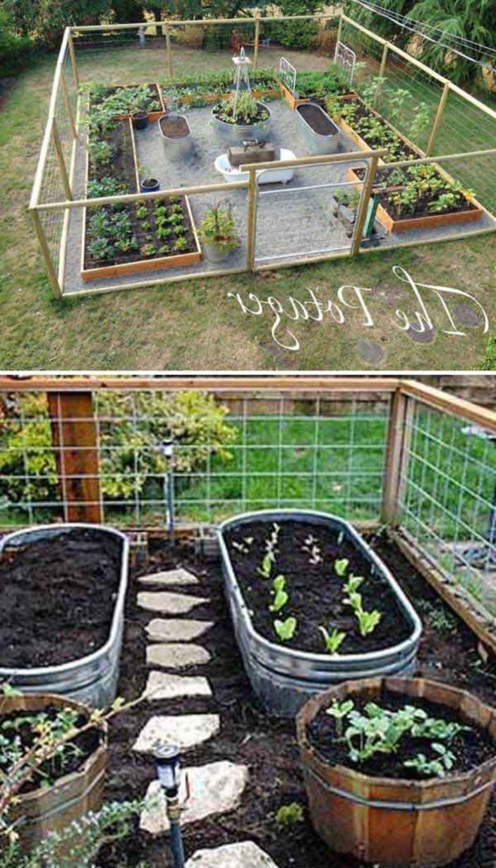 62 Affordable Backyard Vegetable Garden Designs Ideas