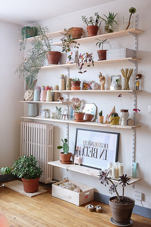 7 Different Way To Indoor Plants Decoration Ideas In