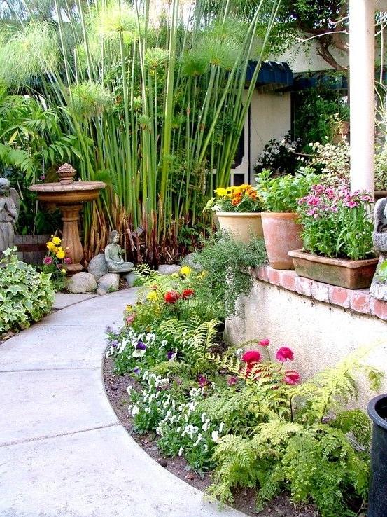 Alle Fleurie Tropical Garden Cottage Garden Beautiful