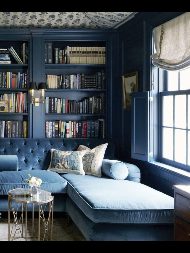 Beautiful Blue Libraryoh In Heaven Monochromatic