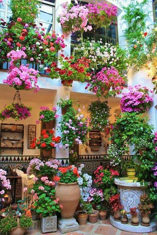 Chary Rosario Alba Beautiful Gardens Garden
