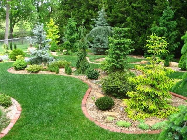 Conifer Garden Design Ideas For Front Yard Conifer Bed